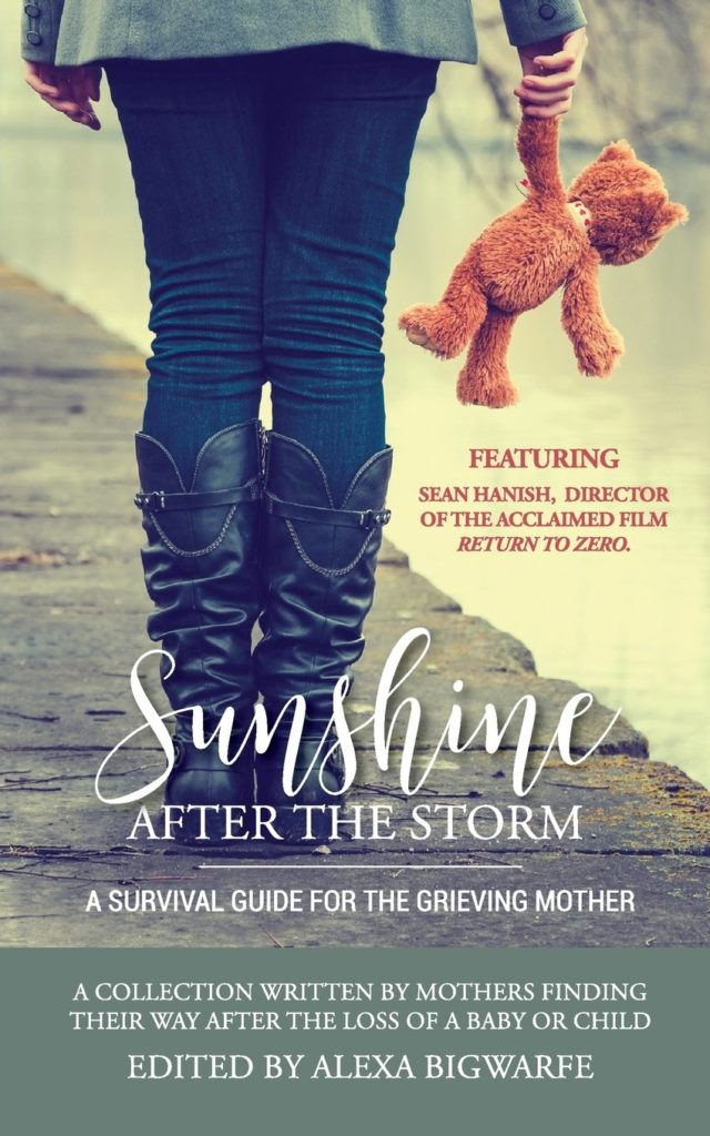 """Book cover of mom holding a teddy bear. """"Sunshine After The Storm: A Survival Guide for the grieving mother."""