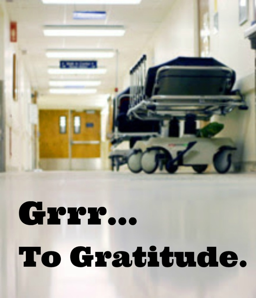 Grrr… To Gratitude