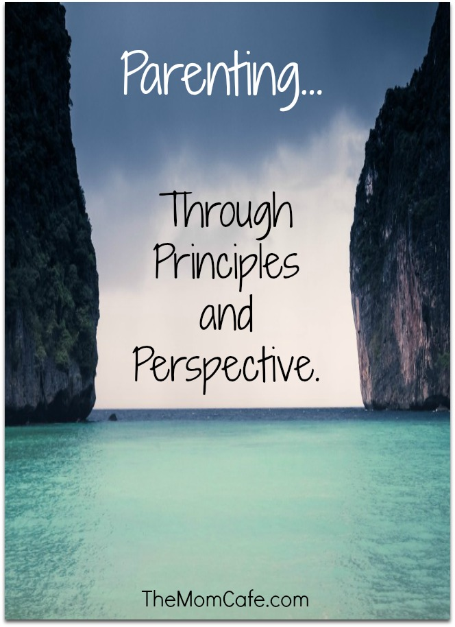 Parenting-Through-Principles-and-Perspective-300x203