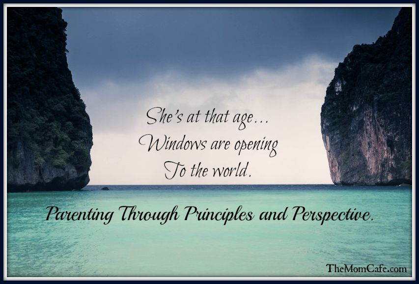 Parenting Through Principles and Perspective