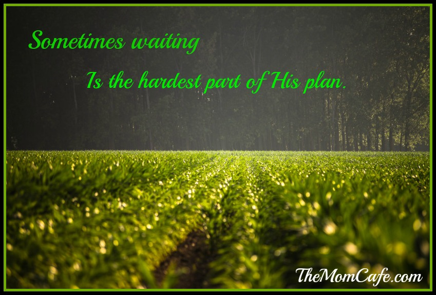 Waiting is the Hardest Part of God's Plan